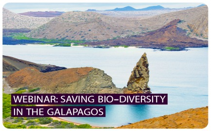 Webinar: Saving Bio-Diversity in the Galapagos