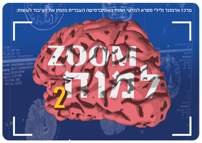 Brain Zoom Series 2