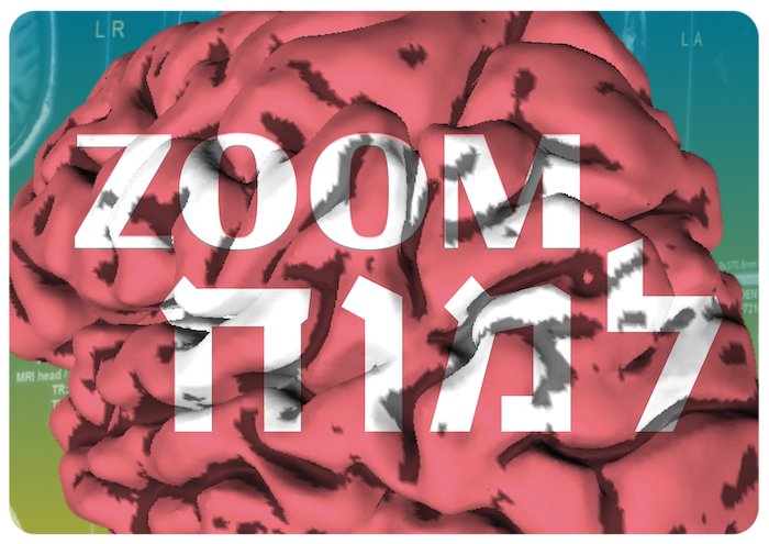 Webinar Series: Zoom to the Brain