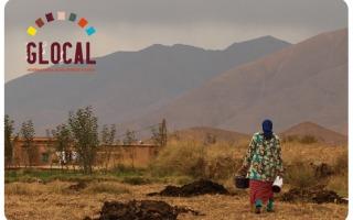 Glocal International Studies - Alumni video
