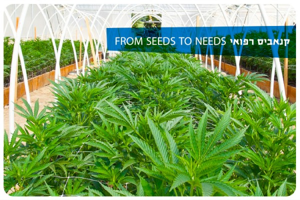 Medical Cannabis Course 2021