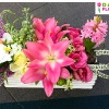 Dalia Flowers